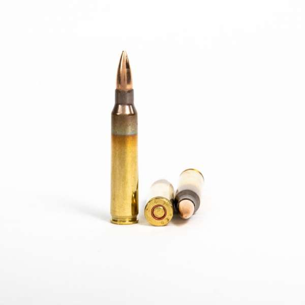 PMC 5.56X 5.56x45mm 55 Grain FMJ Rounds